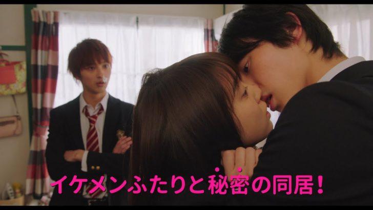 ldk 映画 2019 予告 続き